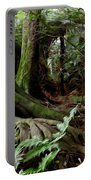 Jungle Trunks1 Portable Battery Charger by Les Cunliffe