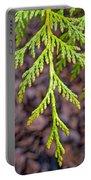 Juniper Leaf Portable Battery Charger