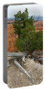 Juniper Tree Clings To The Canyon Edge Portable Battery Charger