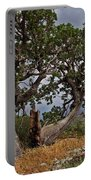 Juniper Tree On The Edge Of The Verde Valley Portable Battery Charger