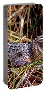 Juvenile American Alligator Portable Battery Charger