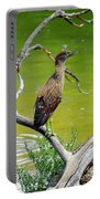 Juvenile Black-crowned Night Heron  Portable Battery Charger