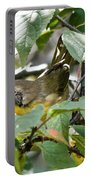 Juvenile Common Yellowthroat Portable Battery Charger