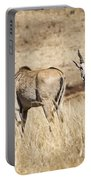 Juvenile Eland Portable Battery Charger