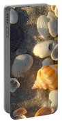 Juvenile Florida Fighting Conch Portable Battery Charger