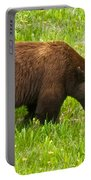 Juvenile Grizzly Bear In Kootenay Np-bc Portable Battery Charger