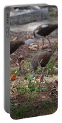 Juvenile Ibis Portable Battery Charger