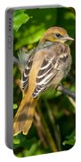 Juvenile Oriole Portable Battery Charger