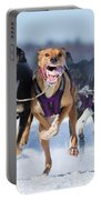K9 Athletes Portable Battery Charger by Mircea Costina Photography