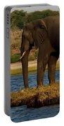 Kalahari Elephants Preparing To Cross Chobe River Portable Battery Charger