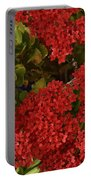 Kalanchoe Flowers Portable Battery Charger