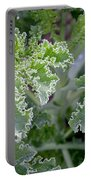 Kale Interior Portable Battery Charger