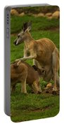 Kangaroo Nursing Its Joey Portable Battery Charger