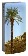 Karnak Temple 12 Portable Battery Charger