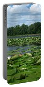 Kayaking Among The Waterlillies Portable Battery Charger