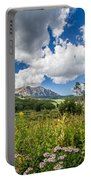 Kebler Pass Meadow Portable Battery Charger