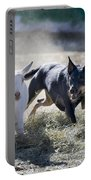 Kelpie Dog Portable Battery Charger