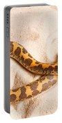 Kenyan Sand Boa Eryx Colubrinus Portable Battery Charger