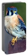 Kestrel Portable Battery Charger