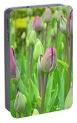 Keukenhof Gardens 12 Portable Battery Charger