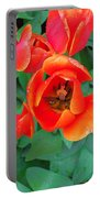 Keukenhof Gardens 2 Portable Battery Charger