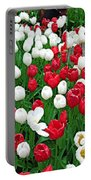 Keukenhof Gardens Panoramic 20 Portable Battery Charger
