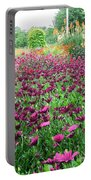 KEW Portable Battery Charger