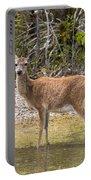 Key Deer Portrait Portable Battery Charger
