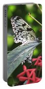 Key West Butterfly Conservatory - Idea Leuconoe Portable Battery Charger