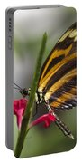 Key West Butterfly Conservatory - Papilio Zagreus Portable Battery Charger