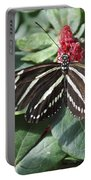 Key West Butterfly Conservatory - Zebra Heliconian Portable Battery Charger
