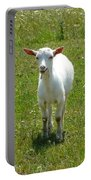 Kid Goat Portable Battery Charger