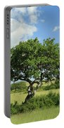 Kigelia Pinnata Tree Portable Battery Charger
