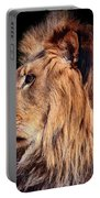 King Of Beast Portable Battery Charger
