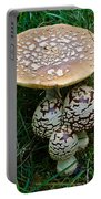 King Of Sweden Amanita Portable Battery Charger