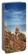King Of The Hill Portable Battery Charger