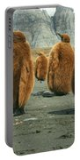 King Penguin Chicks Portable Battery Charger