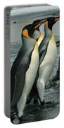 King Penguins Coming Ashore Portable Battery Charger