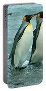 King Penguins Going To Sea Portable Battery Charger