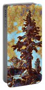 Kings River Canyon Colorized Portable Battery Charger