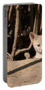 Kit Fox Pup Portable Battery Charger
