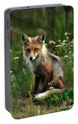 Kit Red Fox Portable Battery Charger