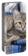 Kitten In The Blanket Portable Battery Charger