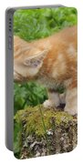 Kitten With Flowers Portable Battery Charger