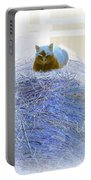 Kitty Blue IIi Portable Battery Charger
