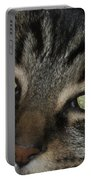 Kitty Cat Eyes Portable Battery Charger