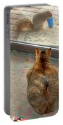 Kitty Watches The Squirrel Portable Battery Charger