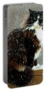 Kittycat In The Snow On The Fence Portable Battery Charger