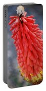 #kniphofiauvaria Portable Battery Charger