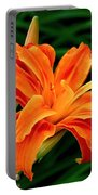 Kwanso Lily Portable Battery Charger